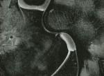 Thumbnail image: Untitled, 1961
