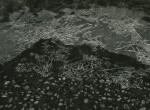 Thumbnail image: Untitled, 1964