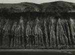 Thumbnail image: Wynn Bullock<br>Erosion, 1959