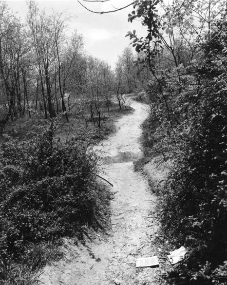 John Gossage  The Pond, 1980