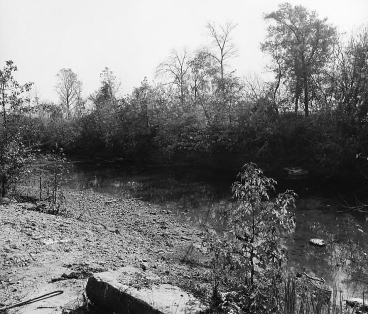 The Pond, 1980-3