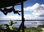 Thumbnail image: Tefe, Brazil, 1993