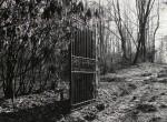 Thumbnail image: Mark Steinmetz<br>Sidewinding Farm Gate, Late 1990s