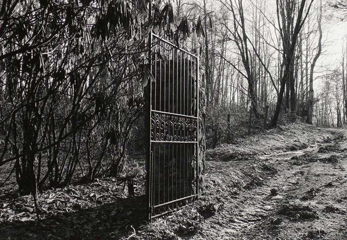 Mark Steinmetz<br>Sidewinding Farm Gate, Late 1990s