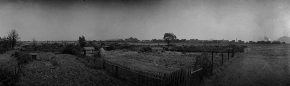 Panorama, 1950s