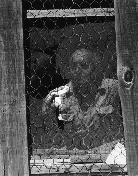 Eric, 1955