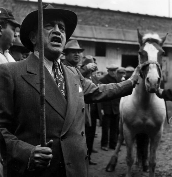 Horse Auction, Brooklyn, 1947