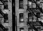 """""""Harlem Tenements,"""" Harlem Document, 1937"""