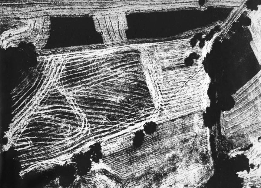 Landscape, #35, 1978