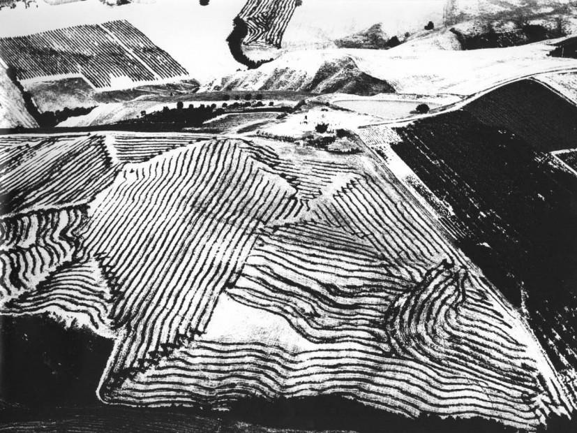 Landscape, #403, n.d.