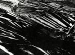 La Buona Terra, 1964-65