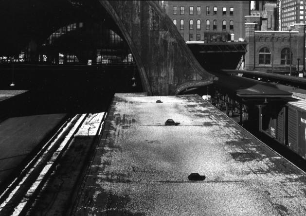 Kenneth Josephson<br>Chicago, 1964