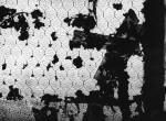 Thumbnail image: Charles Swedlund <br> Chicago, c.1955