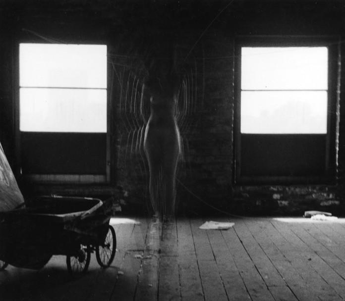 Charles Swedlund<br>Buffalo, c.1970
