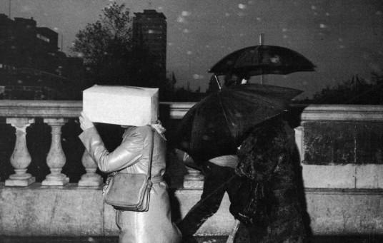 Bad Weather 29, 1981