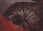 Thumbnail image: Yasuhiro Ishimoto<br>Untitled, 1981