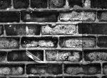Thumbnail image: Chicago, 1976
