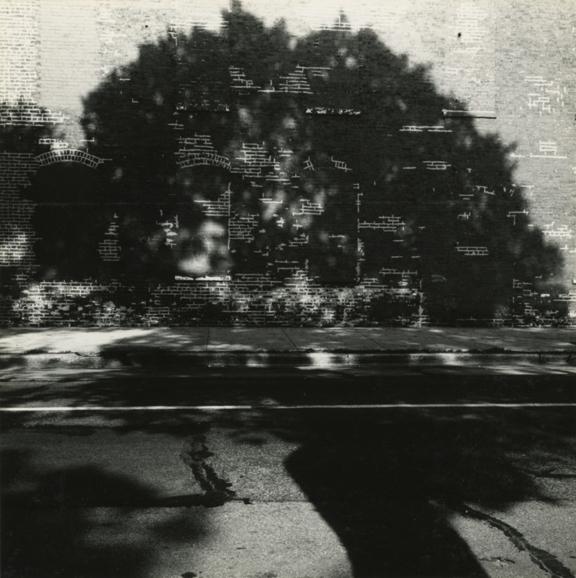 Chicago, 1964