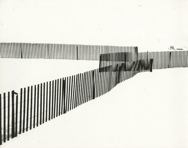 Fences, Jones Beach, 1952