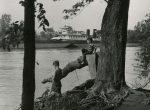 Thumbnail image: Untitled, c.1957