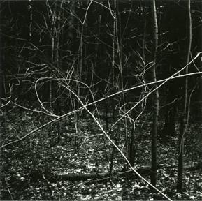 Kenneth Josephson<br>Illinois, 1973
