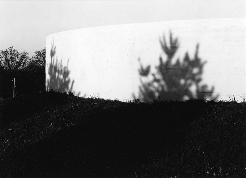Charles Swedlund<br>Cobden, 1973