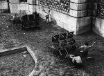 Thumbnail image: Sabine Weiss<br>Montmartre, Paris, 1952
