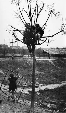 Sabine Weiss<br>Paris, 1950