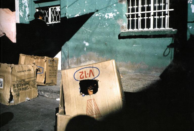 Leon, Mexico, 1987