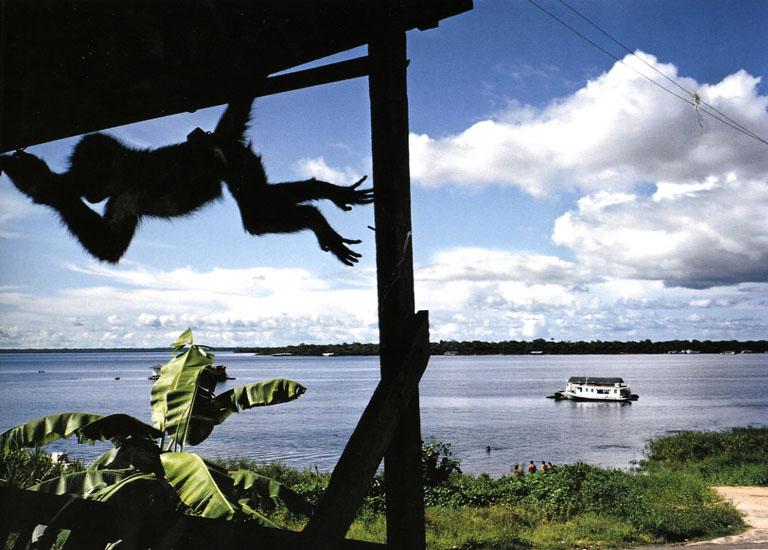 Tefe, Brazil, 1993