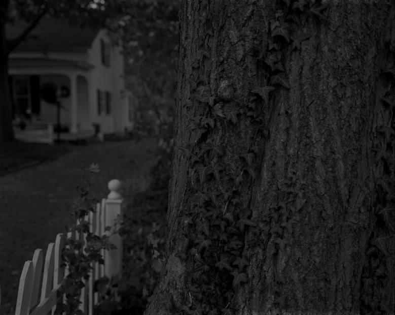 Untitled #5, (Tree Trunk, Picket Fence, and House), from Night Coming Tenderly, Black, 2017