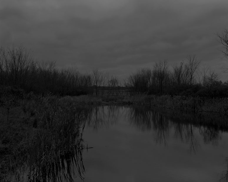 Untitled #12, (The Marsh), from Night Coming Tenderly, Black, 2017