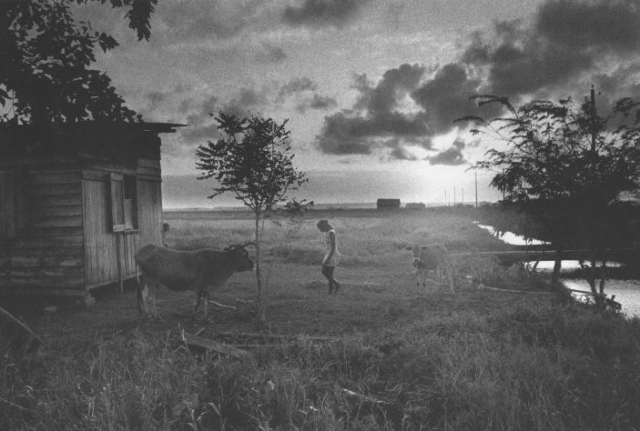 Nickerie, Suriname,  1975