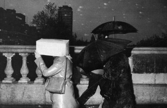 Bad Weather, 1981