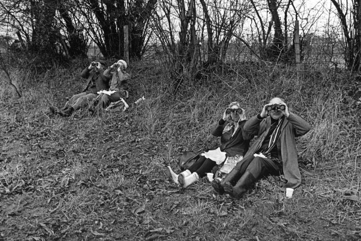 Surrey Bird Club Outing, 1972