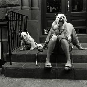 Photographs by Elliott Erwitt
