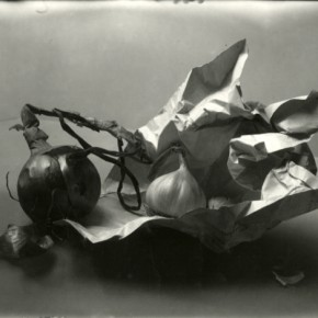 still-life of onion, garlic and crumpled piece of paper