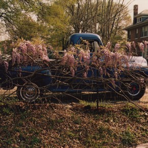 car behind fence with flowers growing along the top