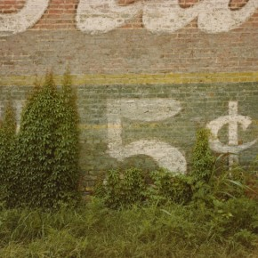 """brick wall with painted sign reading: """"5 cents""""; overgrown grass and ivy"""