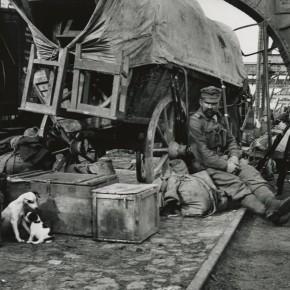 """André Kertész: """"Raison d'Être"""" Photographs from the Concerned Photographer Exhibitions, 1967-69"""
