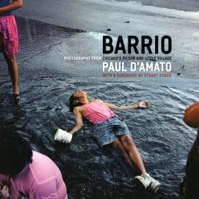 "book cover: ""Paul D'Amato: Barrio"""