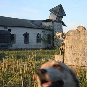 deteriorating Peter's Rock Church with gravestone and blurred dog's face in the foreground
