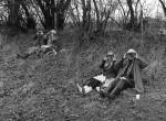 Thumbnail image: Surrey Bird Club Outing, 1972