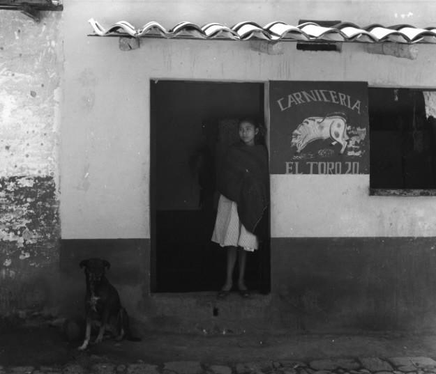 Manuel Alvarez-Bravo <br> Dog Number Twenty, Mexico, 1958