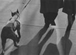Thumbnail image: Lew Parrella <br> New York, 1952