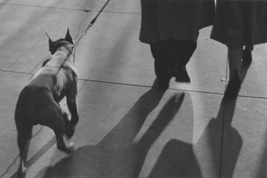 Lew Parrella <br> New York, 1952