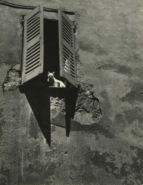 Brassai (Gyula Halász) <br> Fenêtre du Midi