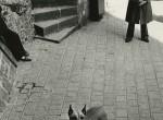 Thumbnail image: Jim Cooke <br> Le Mont St. Michel, France, 1989