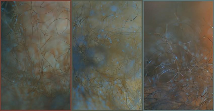 Self-Portrait: Cerveteri, 2014